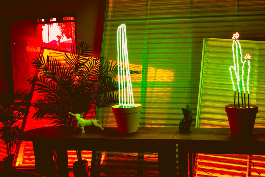 neon cactus and plant lamp with pink and green fluo lights inside a hotel